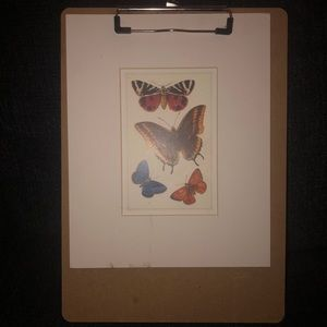 Butterfly print clipped to vintage clipboard